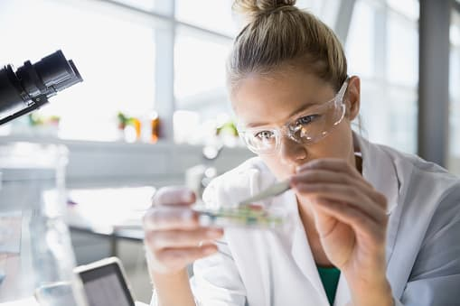 Govt Chemistry Job : Expert Conservator Post @ National Museum