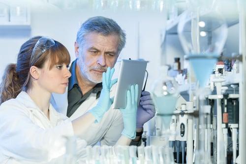 M Pharma & Msc Chemistry Project Fellow Job @ Jadavpur University